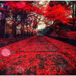 A path to zen beliefs