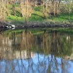 Orillas del rio Miño en Ourense – Orense