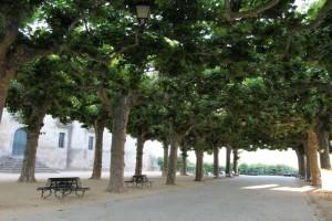 Alameda Celanova Ourense