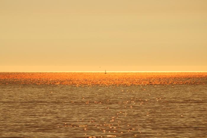wpid-playa-america-autor-manuel-ramallo-13.jpg.jpeg
