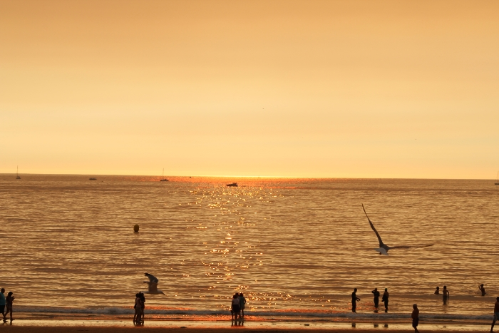 wpid-playa-america-autor-manuel-ramallo-23.jpg.jpeg