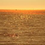 Playa ocaso sunset atardecer América