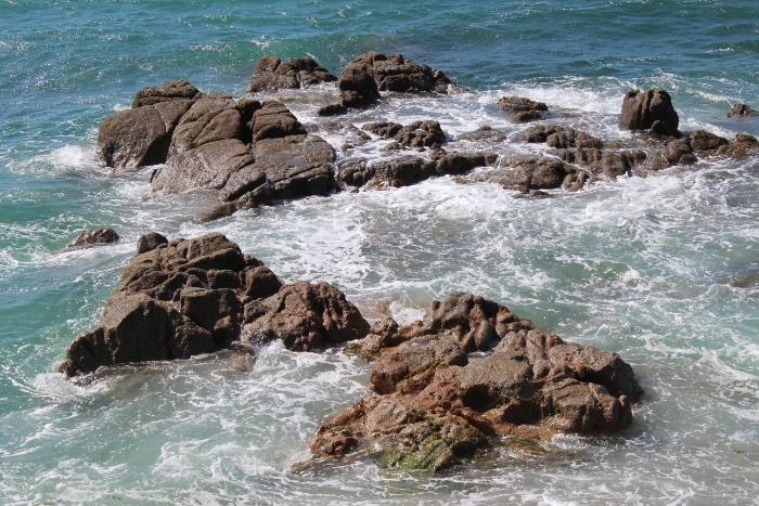 wpid-playa-de-riazor-y-orzan-www.guauquecosas.com-12.jpg.jpeg