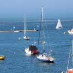 Barcos veleros puerto muelle