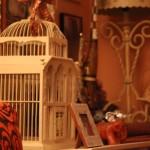 Decoración casa jaula pájaros