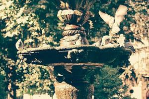 Fuente con palomas