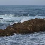 Mar Cantábrico en Tapia de Casariego