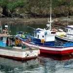 Barcos pesca Tapia de Casariego