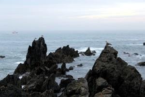 Rocas gaviotas barco al fondo pesca mar cantábrico Asturias