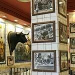 Cabeza de toro de lidia disecado en bar taurino Carrera de San Jerónimo Madrid