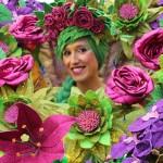 Carnaval de Orense desfile 2016 imagen 4