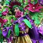 Carnaval de Orense desfile 2016 imagen 5