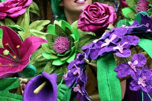 Carnaval de Orense desfile 2016 imagen 6