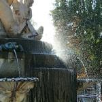 Contraluz fuente parque Retiro Madrid