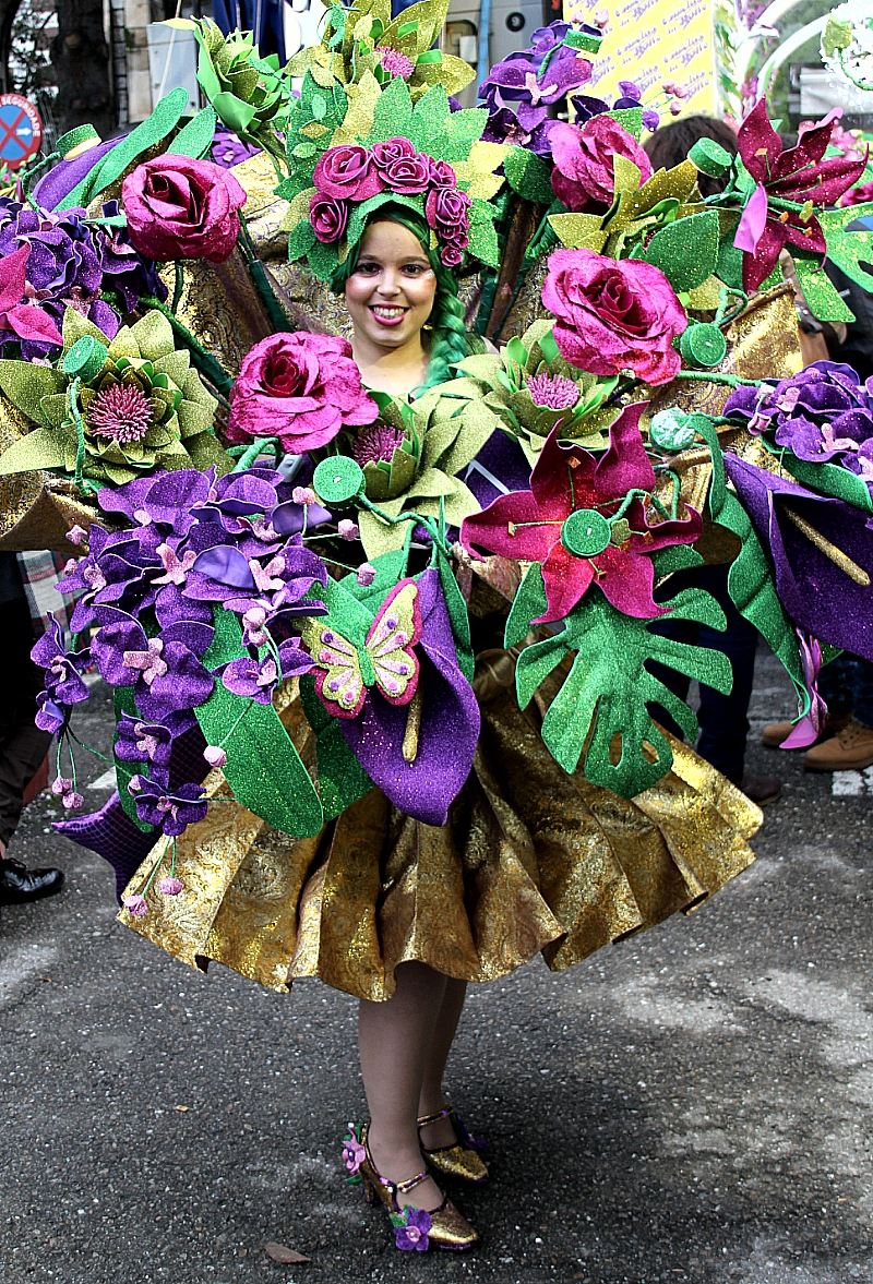 Desfile Carnaval 2016 Ourense Orense 2