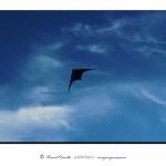 Cometa en el cielo – Imagen: Manuel Ramallo