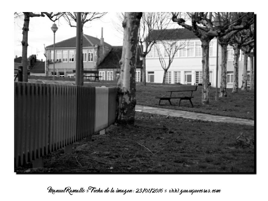 Parque público en Galicia en otoño blanco y negro B&W - Imagen: Manuel Ramallo