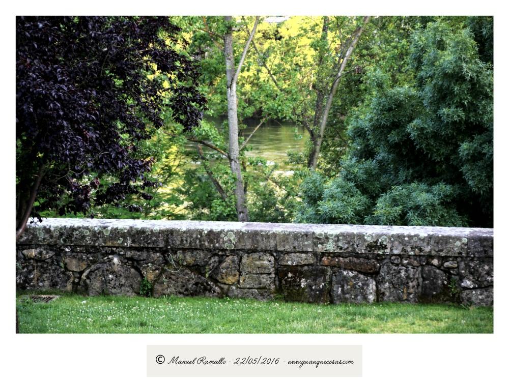 Paseo junto al río Miño Orense naturaleza verde - Imagen: Manuel Ramallo