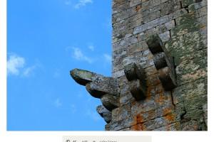 Torre de Vilanova dos Infantes Celanova – Imagen: Manuel Ramallo