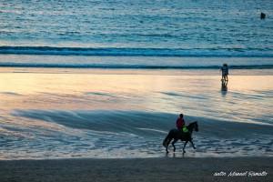 Cabalgando por Playa América verano 2016