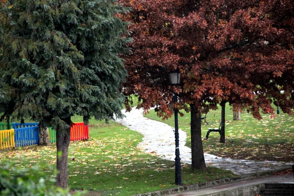 Taboada Lugo parque otoño autor Manuel Ramallo