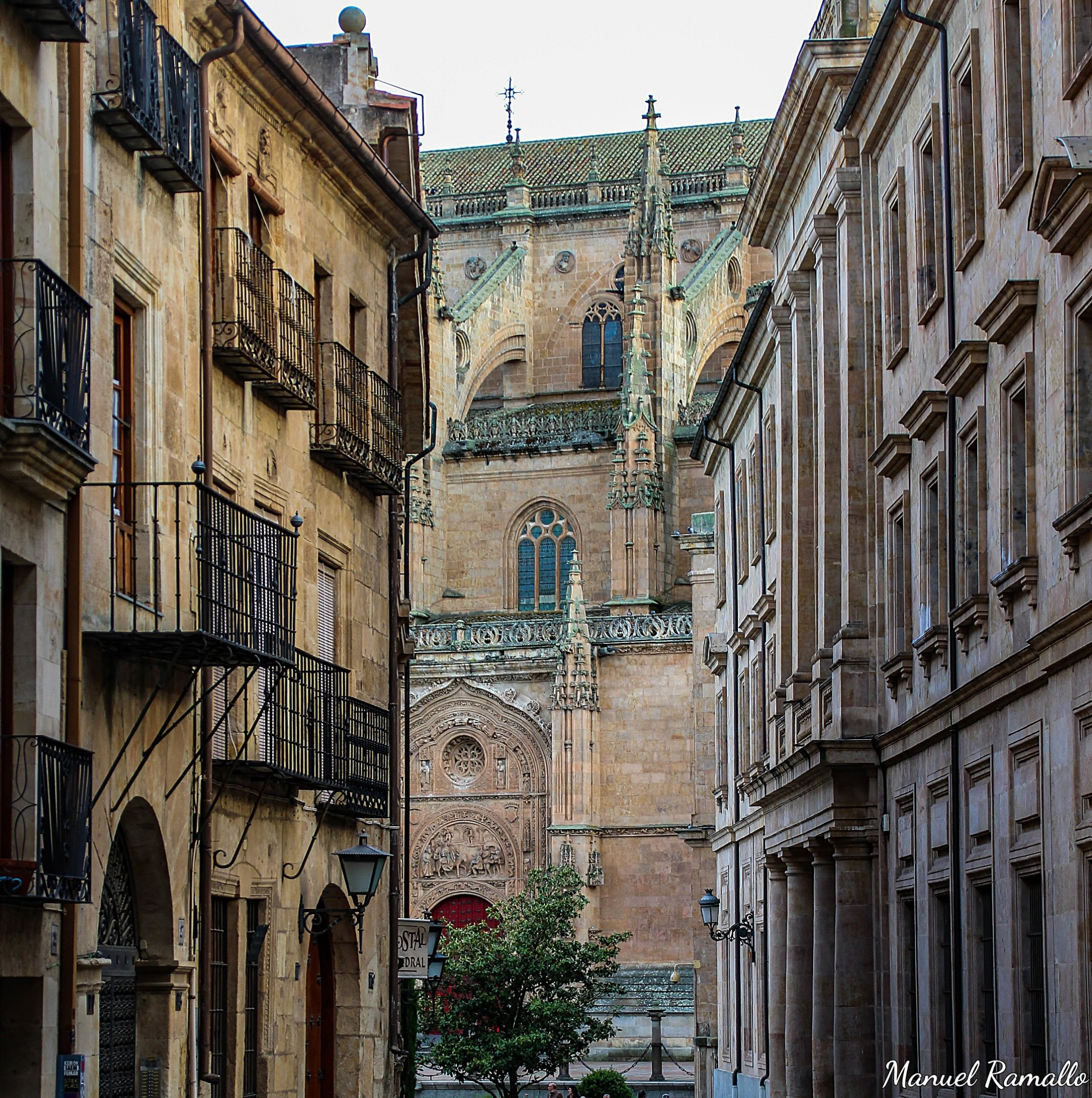 al-fondo-de-la-calle-se-ve-la-catedral-de-salamanca