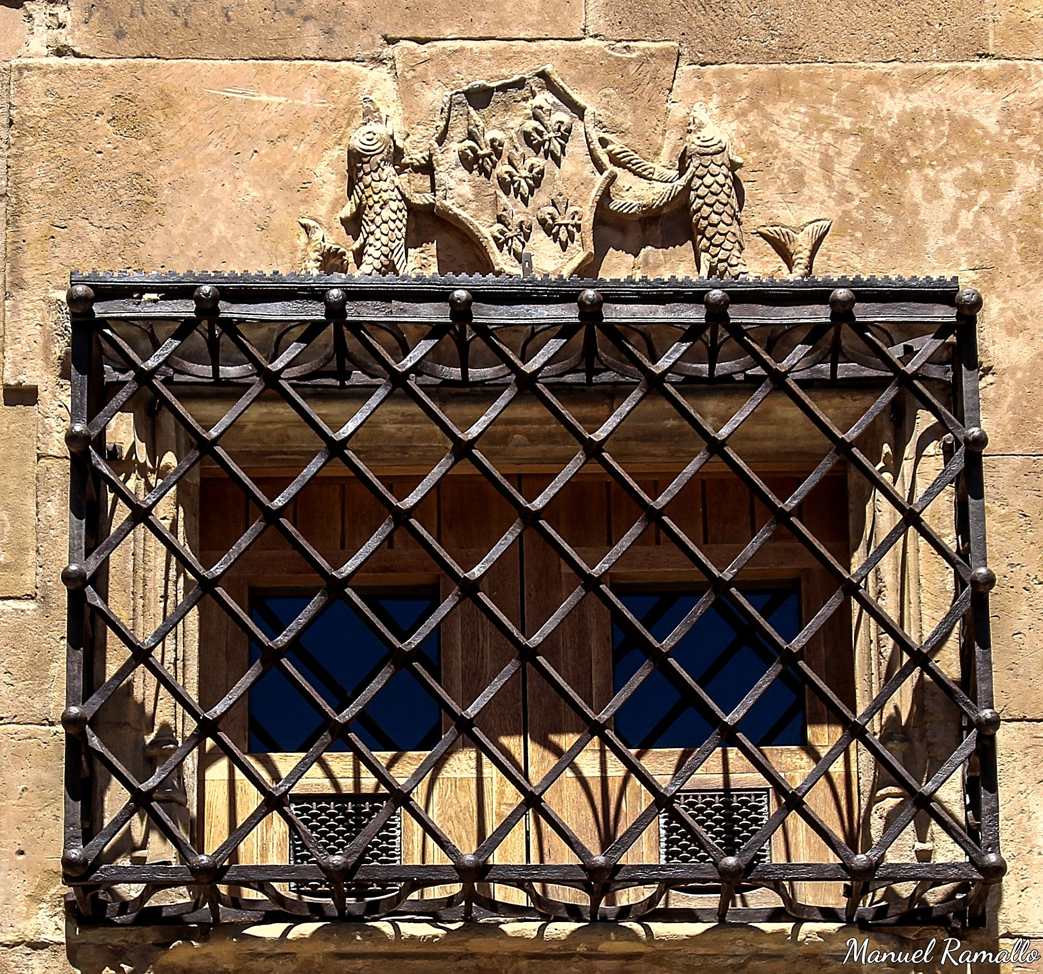 detalle-de-escudo-y-verja-de-ventana-de-casa-de-las-conchas-salamanca