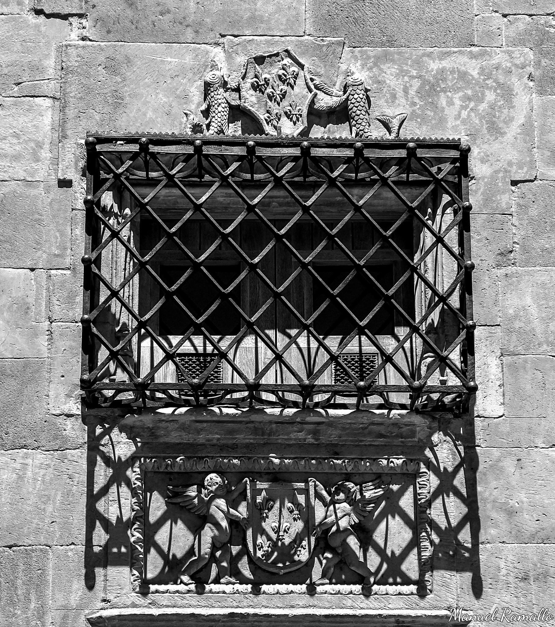verja-ventana-casa-de-las-conchas-salamanca-fachada