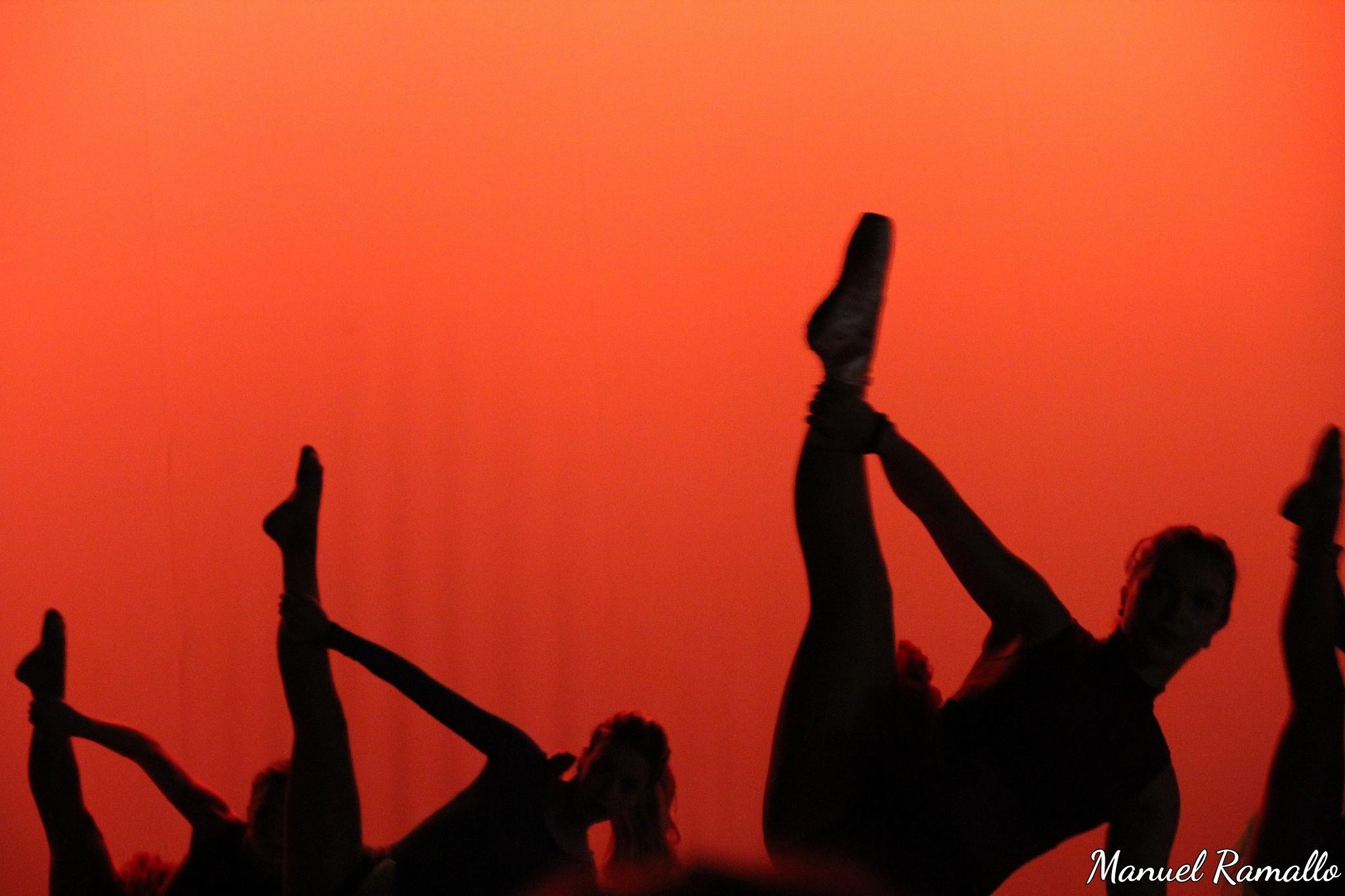 danza-dance