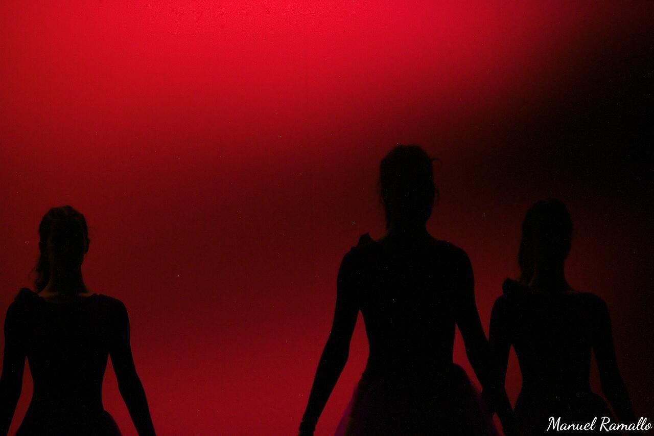 sombras-en-danza