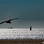 Atardecer en el mar playa América Nigrán Pontevedra