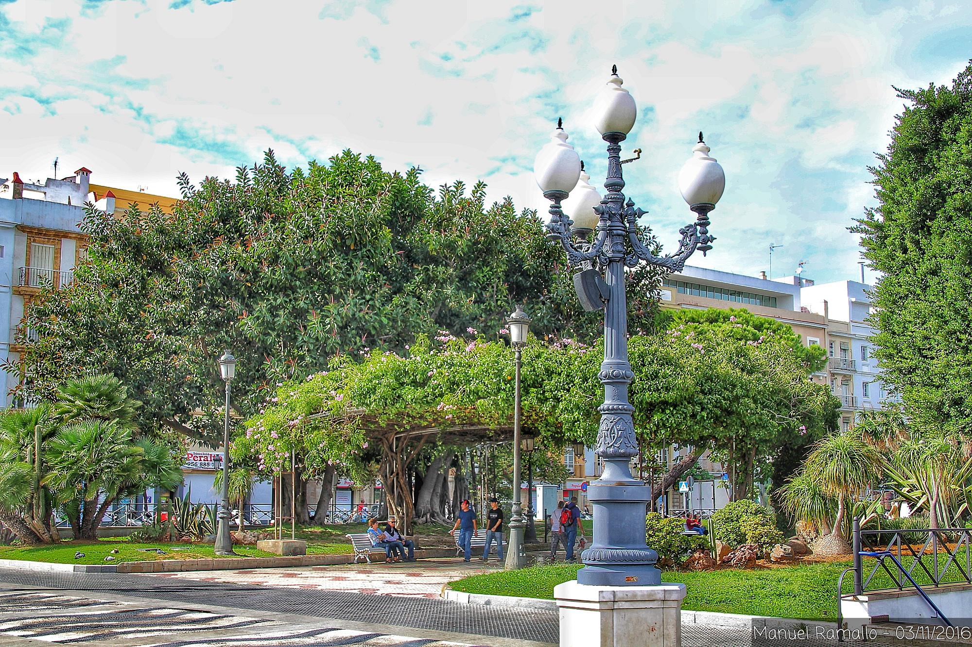 cadiz-plaza-arboles