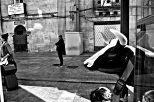vaca-en-la-calle-salamanca-blanco-y-negro