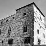casa-de-las-conchas-salamanca-vista-panoramica-blanco-y-negro