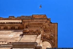 fachada-universidad-pontificia-salamanca-paloma-volando