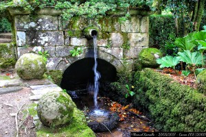 paxo-de-oca-pontevedra-fuente-cano-agua