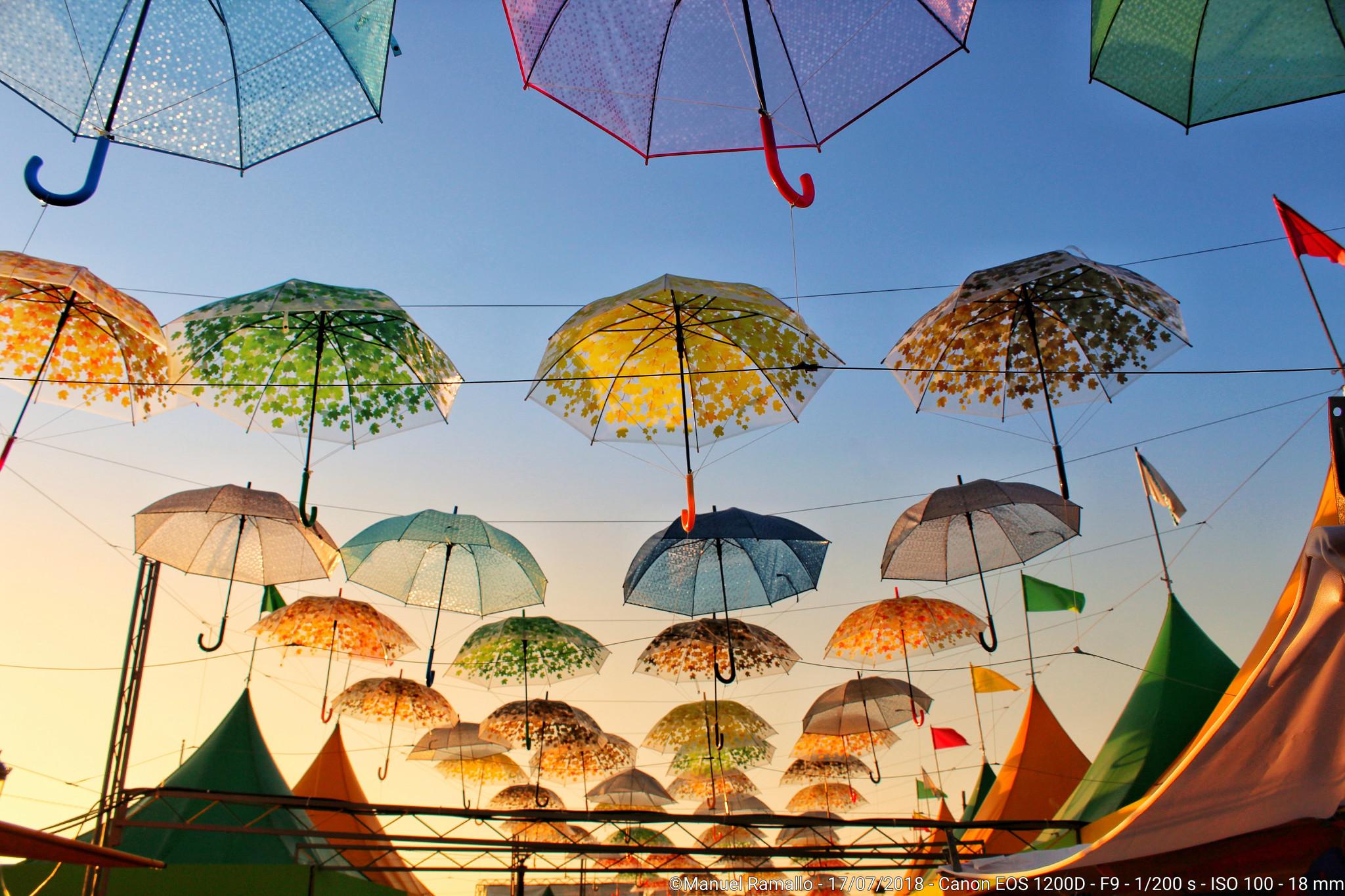 Paraguas al atardecer en playa América