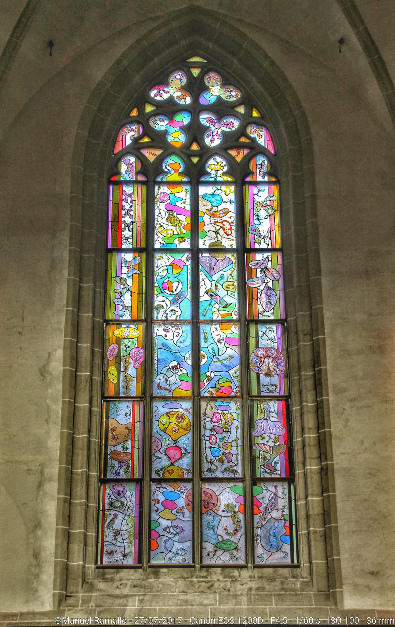 Vidriera Catedral Ámsterdam