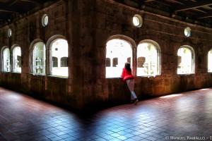Claustro Monasterio de San Estevo de Ribas de Sil