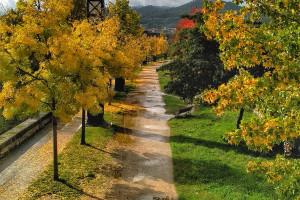 El otoño y el río Miño
